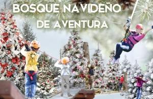 http://oferplan-imagenes.laverdad.es/sized/images/bosquenavideno-300x196.jpg