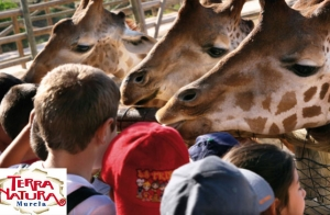 Ven al zoológico Terra Natura en familia